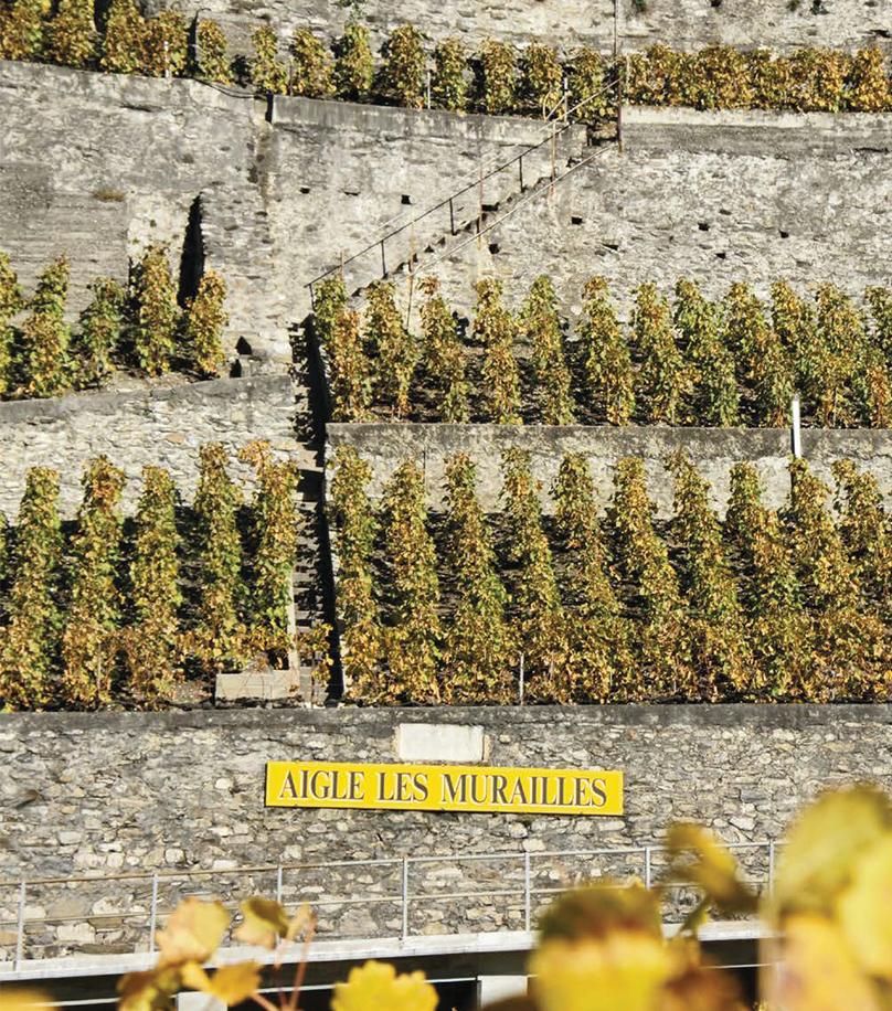 Badoux Vins (Aigle les Murailles)
